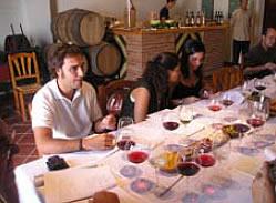 Enoturismo: visitas a bodegas, cata de vinos y turismo Barcelona