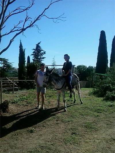 Alquiler de burros - Excursiones en burro